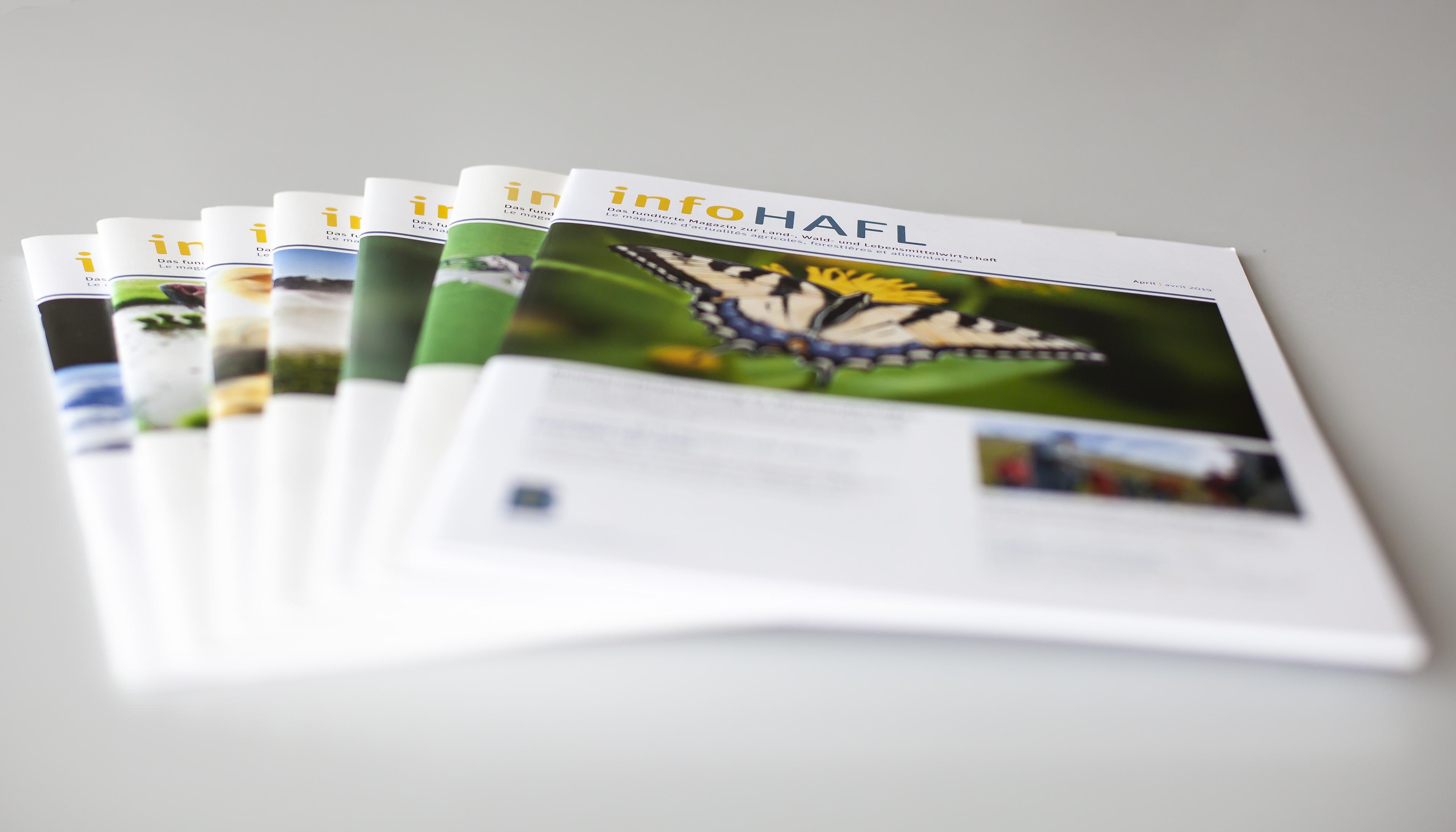 Magazin infoHAFL | BFH